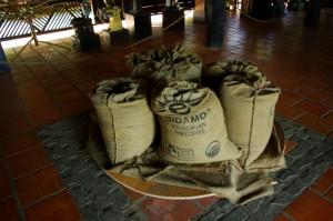 コーヒー村1543