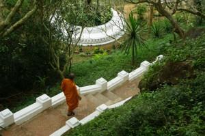 ルアン寺院 189